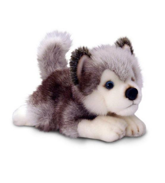 Plus 25cm Husky