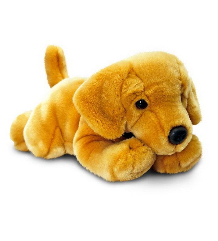 Plus 30cm Labrador Auriu