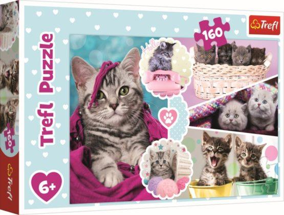 Puzzle Trefl 160 Pisici Dragalase