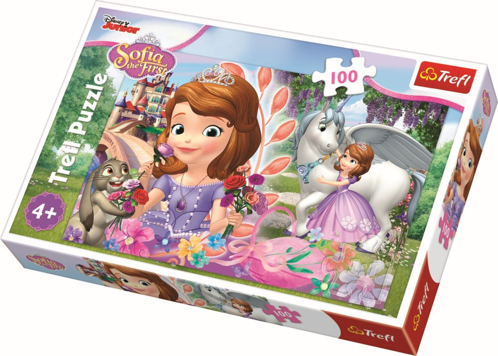 Puzzle Trefl 100 Aventura La Castel
