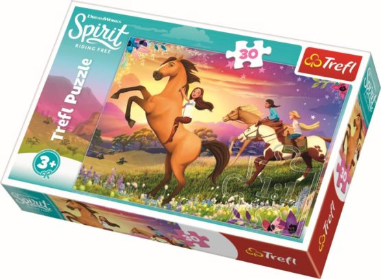 Puzzle Trefl 30 Spiritul Libertatii