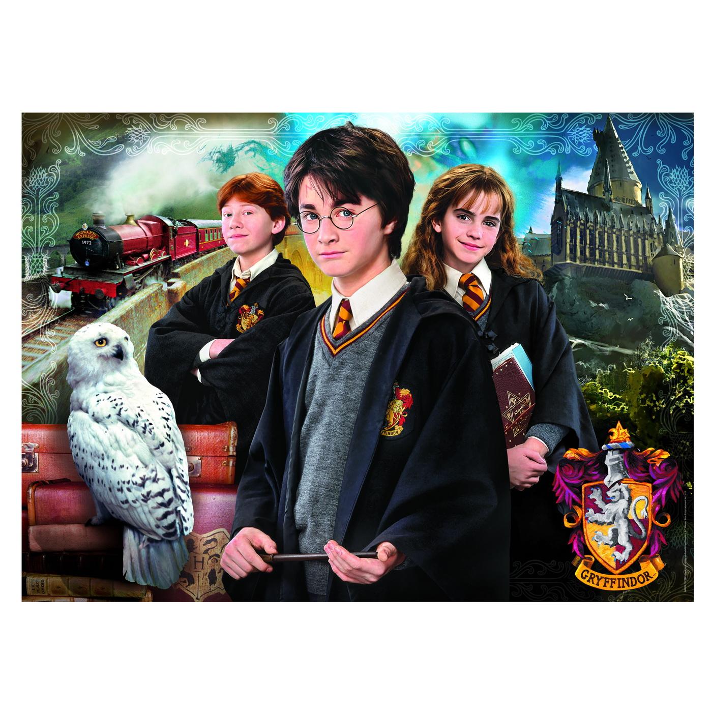 61882_V49404_Harry_Potter_1000_Poster.indd