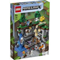 LEGO21169