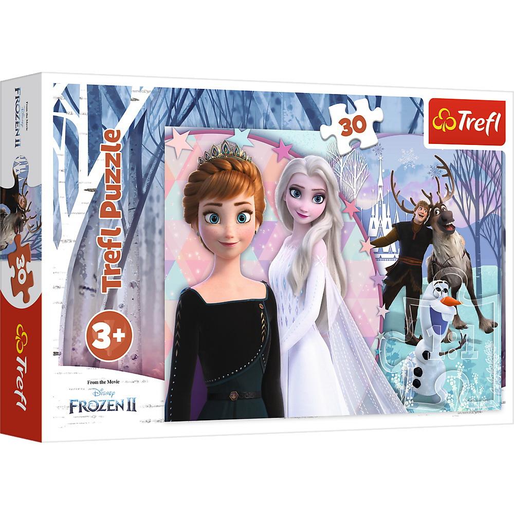 Puzzles 30 Magical Frozen