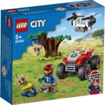 LEGO60300
